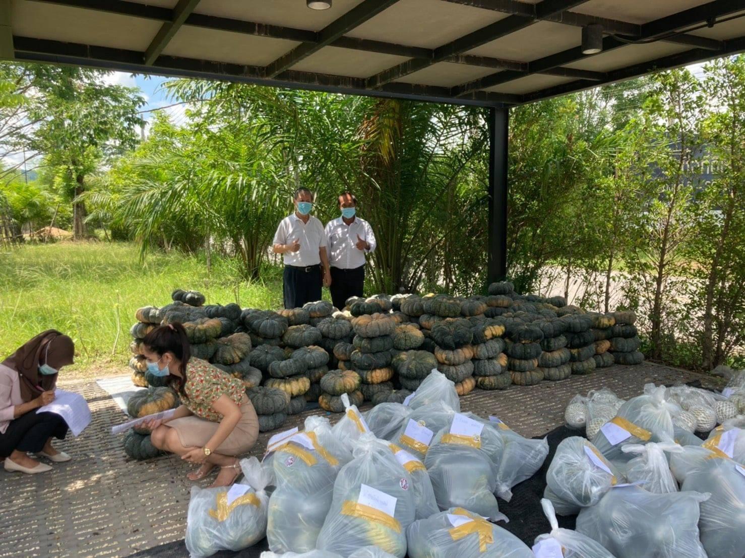 หอการค้าจังหวัดสงขลา และ คณะกรรมการ YEC สงขลา ร่วมสนับสนุนผลผลิตทางการเกษตรของเกษตรกรชาว อ.ระโนด จ.สงขลา